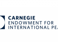 The Carnegie Endowment for International Peace: The Working Group on Egypt's Letter to Secretary of State Pompeo